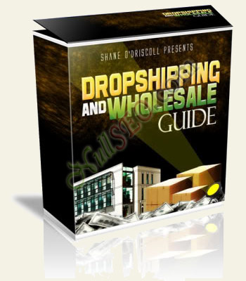 The Dropshipping And Wholesale Guide (достижение успеха на аукционе eBay)